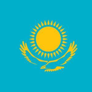 Která vlajka (nebo její část) je na obrázku?