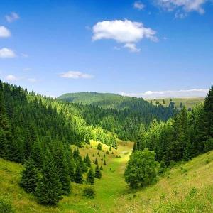 Ústava ktorej krajiny stanovuje, že najmenej 60% plochy štátu musí byť zalesnenej?