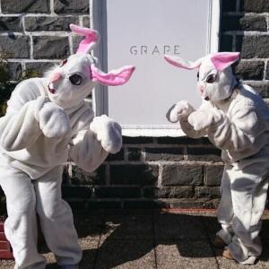 Festival Grape má aj svoju zimnú edíciu. Kde sa konal jej uplynulý ročník?