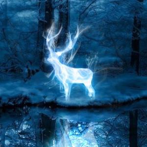 Jaké zvíře nabíralo podobu Hermionina Patrona?
