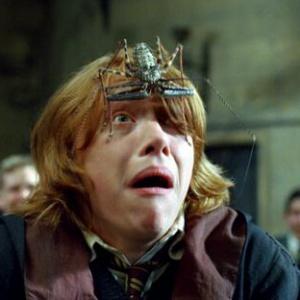 Kolik z neodpustitelných kleteb Harry vyslal na jiné lidi?