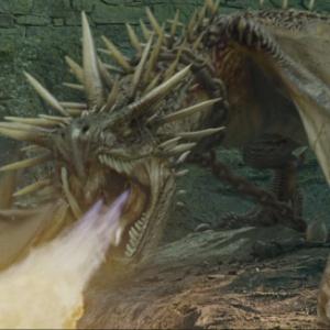 Jakého druhu byl drak, který hlídal Harryho vejce v turnaji tří kouzelníků?