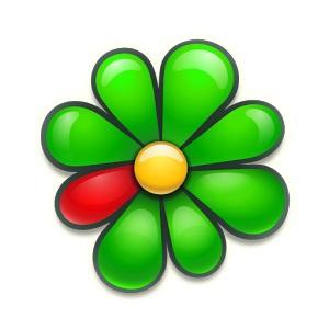 Logo kterého komunikačního programu můžete vidět na obrázku?