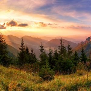 Ktorý zo slovenských národných parkov bol prvým medzinárodným parkom v Európe?