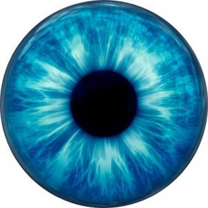 Približne koľko špecifických znakov obsahuje očná dúhovka?