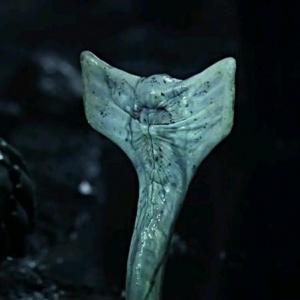 Kdo v Prometheovi zemřel jako první?