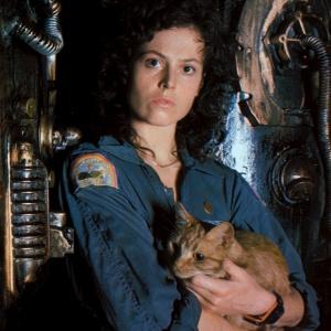 Jak se jmenoval kocour, kterého Ellen Ripleyová chovala na palubě lodi ve Vetřelci?