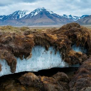 Ako sa nazýva oblasť strvalo zamrznutou pôdnou vodou?