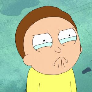 Koľko rokov má Morty?
