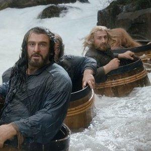 Který trpaslík byl zraněn při útěku od elfů?