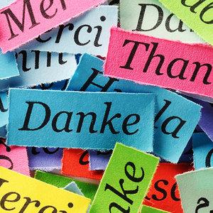 Da li govorite i drugim jezikom osim svog maternjeg jezika?