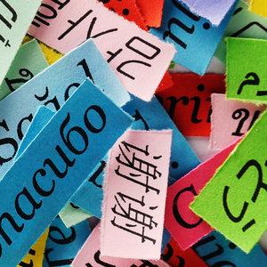 Een enkele taal is nooit genoeg!