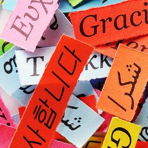 Bir dil asla yeterli değildir!